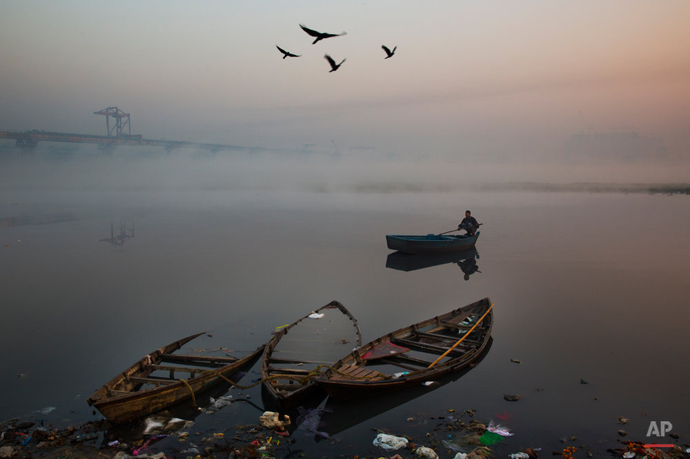 Birds fly past as a man rows his boat in River Yamuna in the morning in New Delhi, India, Tuesday, Dec. 9, 2014. Clogged with garbage, sewage and industrial runoff, the Yamuna, which is one of Indiaís major rivers, is also one of the most polluted.(AP Photo/Benat Armangue)