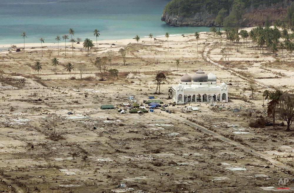 Tsunami A Look Back Photo Gallery
