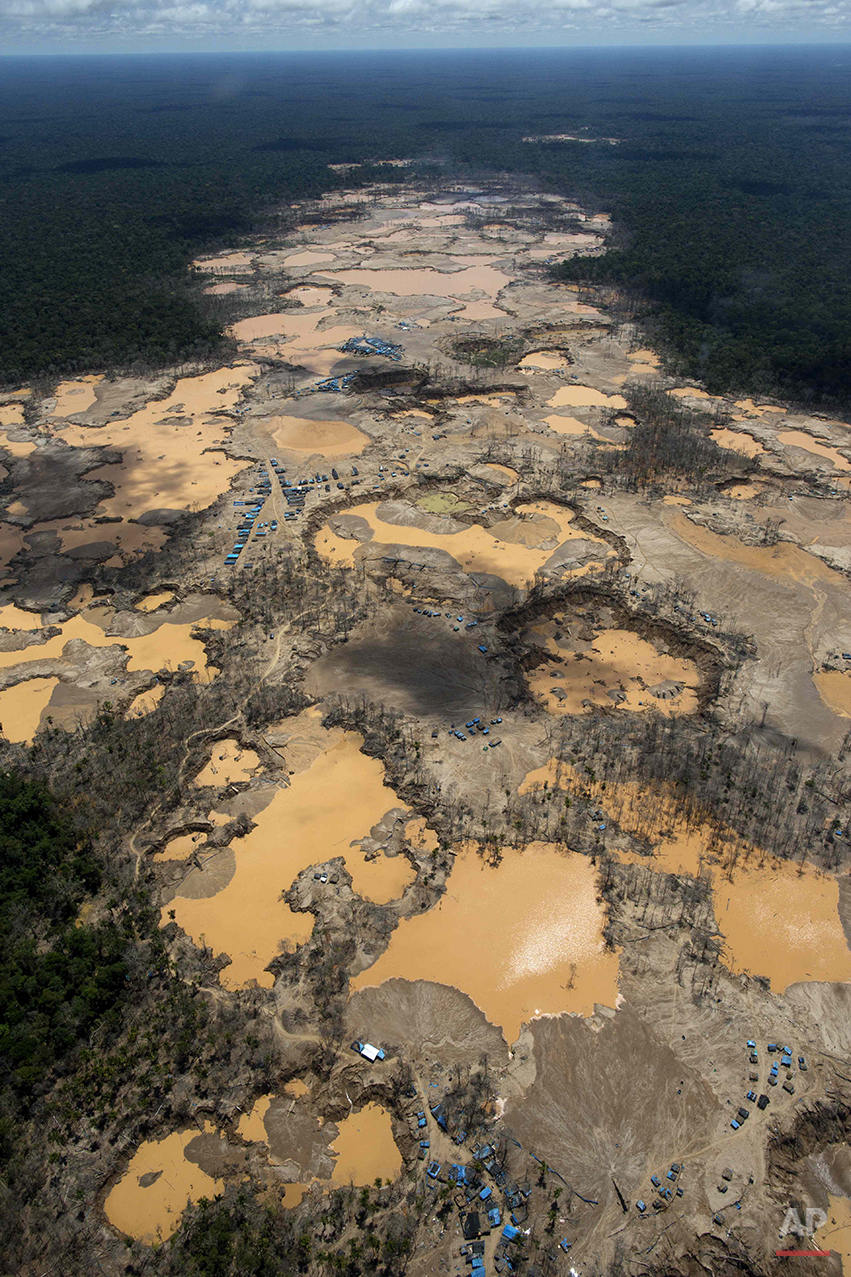 This Nov. 11, 2014 aerial photo, shows a deforested area dotted with blue tarps, marking the area where miners reside, and craters filled with water, caused by illegal gold mining activities, in La Pampa, in Peru's Madre de Dios region. Less than a month before Peru plays host to global climate talks, the government sent a battalion of police into southeastern jungles to dismantle illegal gold-mining mining camps. In addition to contributing to deforestation, the illegal alluvial gold mining contaminates the jungle with tons of mercury. (AP Photo/Rodrigo Abd)