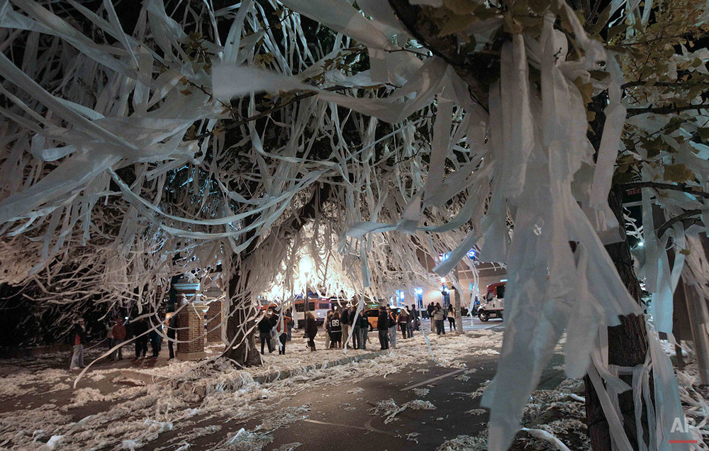 The trees at Toomer's Corner in Auburn, Ala., are adorned with thousands of rolls of toilet paper Sunday, Dec. 5, 2010 following a 56-17 win over South Carolina in the Southeastern Conference Championship NCAA college football game at the Georgia Dome in Atlanta on Saturday.  (AP Photo/Dave Martin)