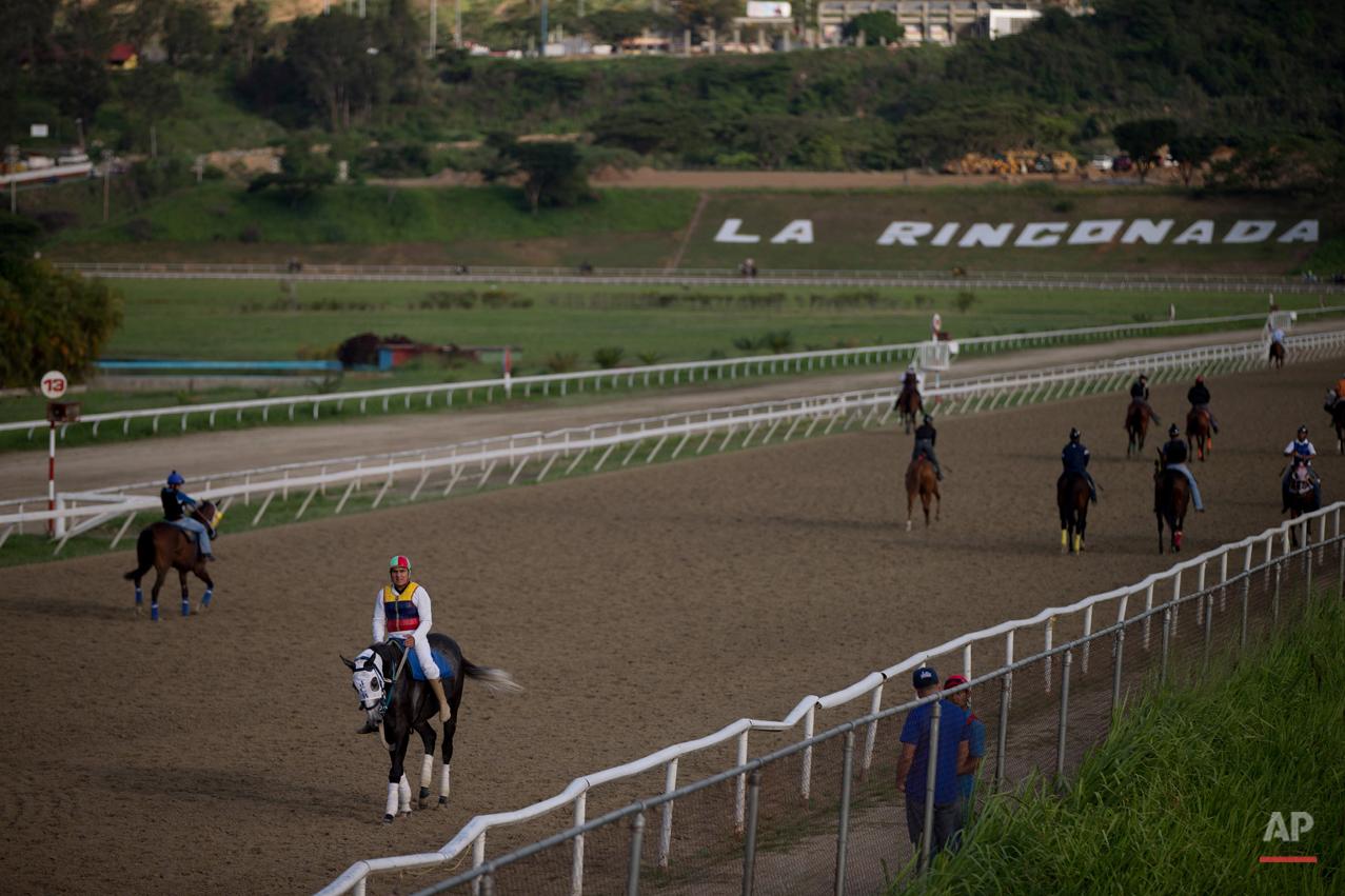 venezuela horse mafia ap images spotlight venezuela horse mafia photo essay