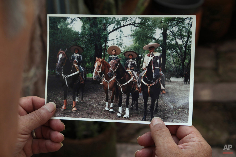 Mexico Charro Horses Photo Gallery