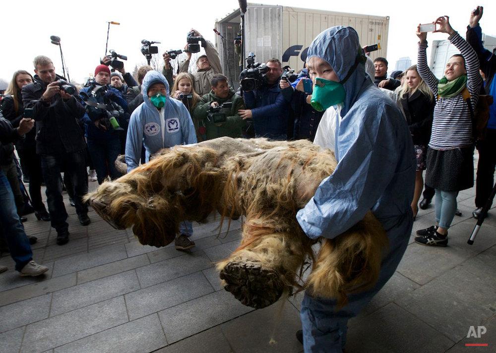 APTOPIX Russia Baby Mammoth