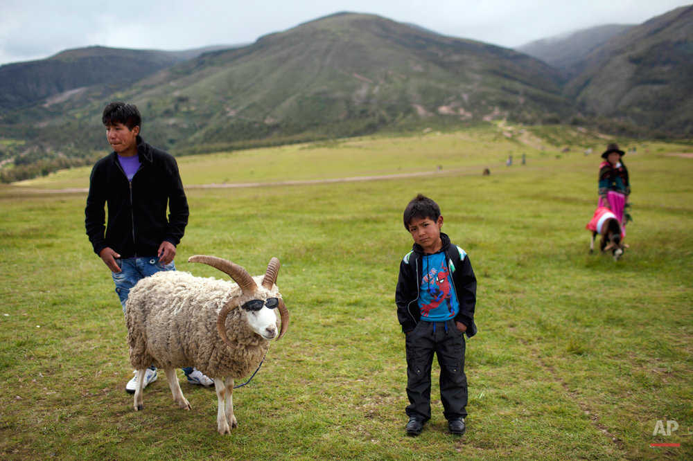 Manuel and his five-year-old brother Diego, right, wait for people to pose with their goat, for a nominal fee, near the Battle of Ayacucho monument, in Ayacucho, Peru, Friday, March 29,  2013. The brothers put sunglasses on their goat to attract the attention of the passing tourists. The battle was the last major confrontation and marked the definitive end of Spanish colonial rule in South America. The battle took place in the Pampa de Quinoa, Ayacucho on Dec.  9, 1824.  (AP Photo/Rodrigo Abd)