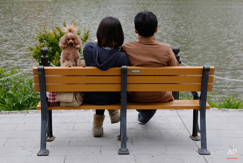 A couple and their dog rest on a bench at a park in Tokyo Tuesday, May 6, 2014. (AP Photo/Shizuo Kambayashi)