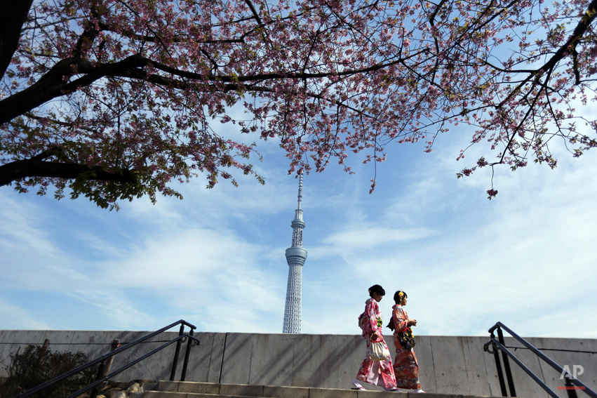 Two women with Japanese traditional clothing or kimono stroll to see cherry blossom at Sumida Park near Tokyo Skytree skyscraper in the background in Tokyo, Saturday, March 29, 2014. Tens of thousands of admirers will be expected to show up at the park to enjoy the white pink blossoms. (AP Photo/Eugene Hoshiko)