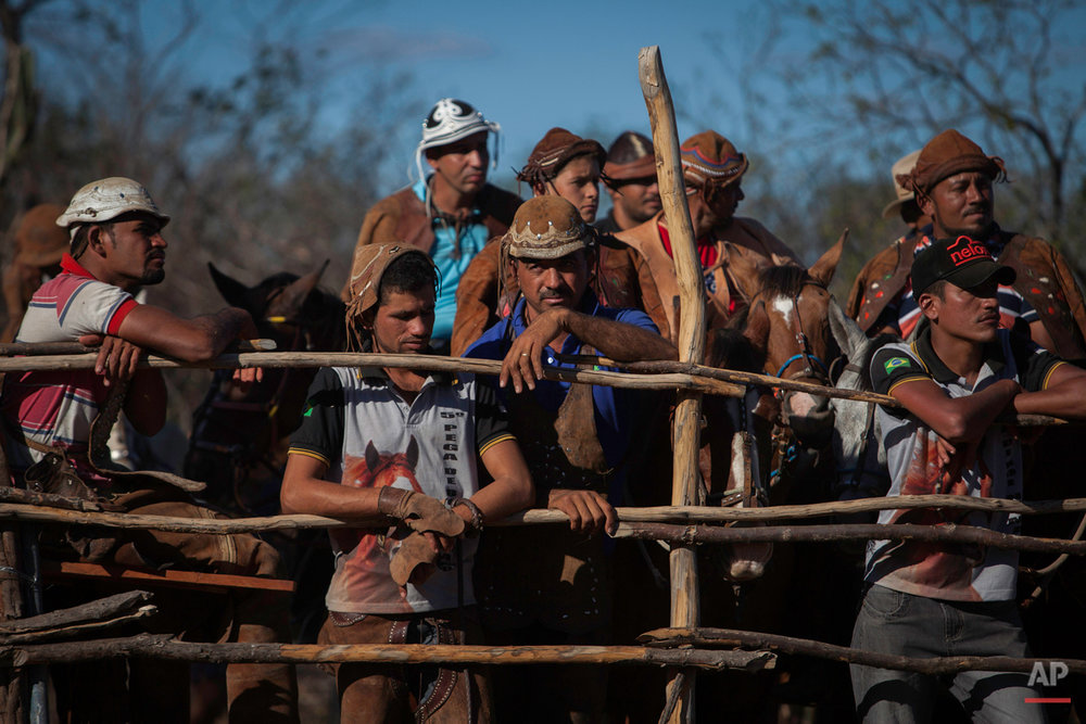 """In this July 24, 2015 photo, cowboys stand on the edge of the corral during the annual Catch the Bull event known as """"Pega do Boi"""" in Serrita, in Brazil's Pernambuco state. Women never compete in Catch the Bull, and at this particular competition there weren't any female spectators. (AP Photo/Eraldo Peres)"""
