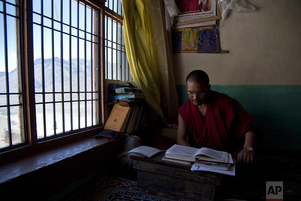 In this Aug. 16, 2016, photo, Buddhist lama Tenzin Rigzin studies religious texts in his room at the Key monastery, Spiti Valley, India. (AP Photo/Thomas Cytrynowicz)