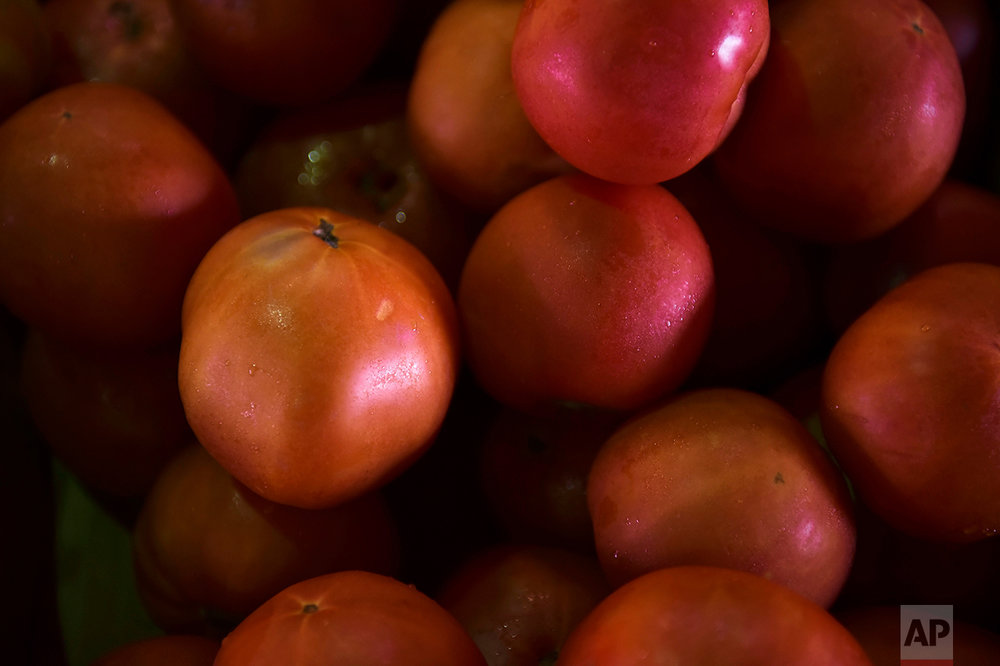 This Sept. 23, 2016 photo shows tomatoes for sale at La Placita de Santurce farmers' market which sells mostly locally grown produce in San Juan, Puerto Rico. (AP Photo/Carlos Giusti)