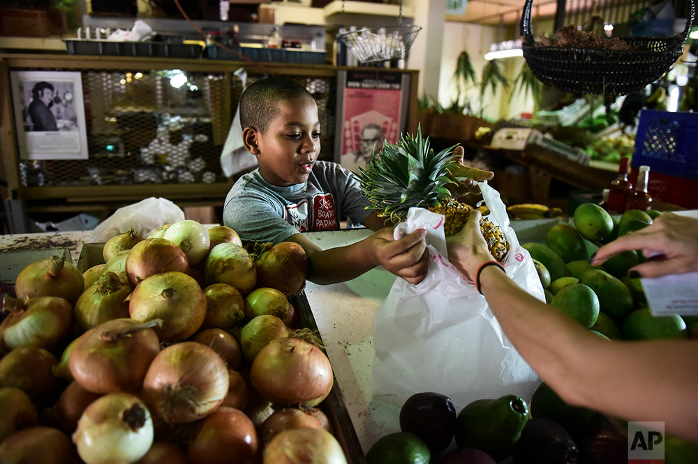 In this Sept. 23, 2016 photo, Yoniel Santana works at his grandmother's produce stand at La Placita de Santurce farmers' market which sells mostly locally grown produce in San Juan, Puerto Rico. (AP Photo/Carlos Giusti)