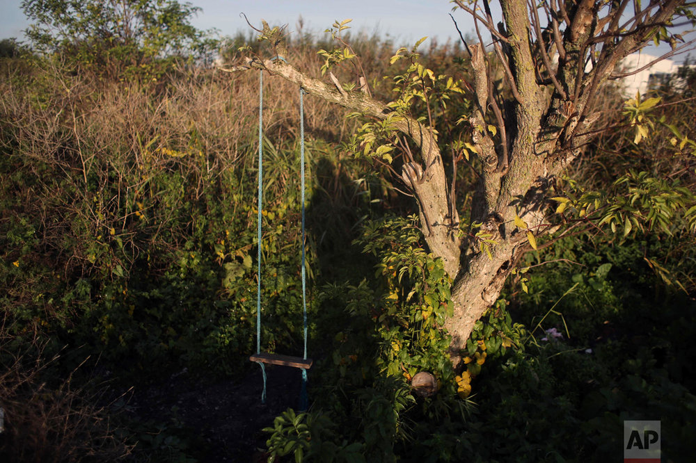 """In this Thursday, Oct. 27, 2016 photo, a swing used by migrants hangs from a tree at the makeshift migrant camp known as """"the jungle"""" near Calais, northern France. (AP Photo/Thibault Camus)"""