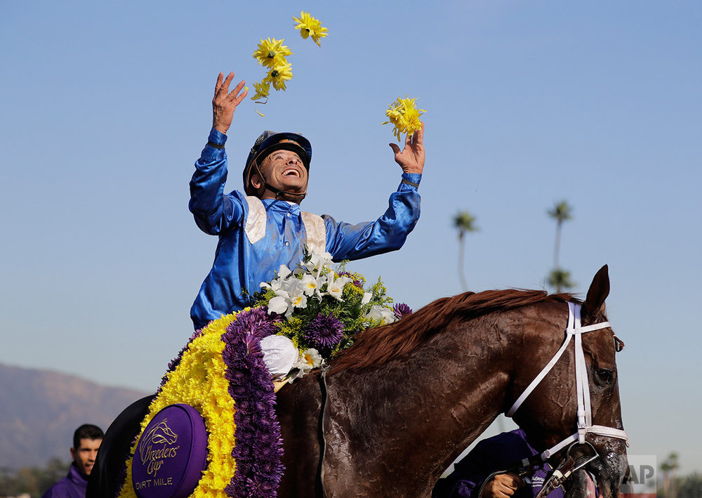 Jockey Mike Smith celebrates after riding Tamarkuz to victory in the Breeders' Cup Dirt Mile horse race at Santa Anita, Friday, Nov. 4, 2016, in Arcadia, Calif. (AP Photo/Jae C. Hong)