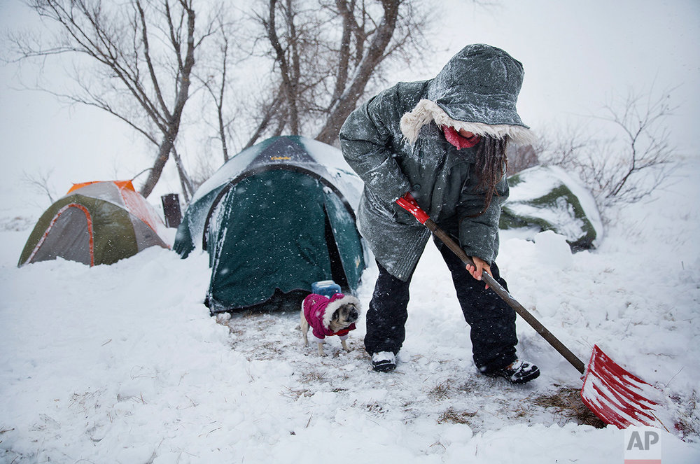 """In this Tuesday, Nov. 29, 2016 photo, Loretta Reddog, of Placerville, Calif., shovels a walkway to her tent while followed by her dog Gurdee Bean at the Oceti Sakowin camp where people have gathered to protest the Dakota Access oil pipeline in Cannon Ball, N.D. """"I'm scared. I'm a California girl, you know?"""" said Reddog who arrived several months ago with her two dogs and has yet to adjust to the harsher climate. Reddog has confidence in the camp community. """"Everybody's really stepping up and taking care of each other,"""" she said. (AP Photo/David Goldman)"""