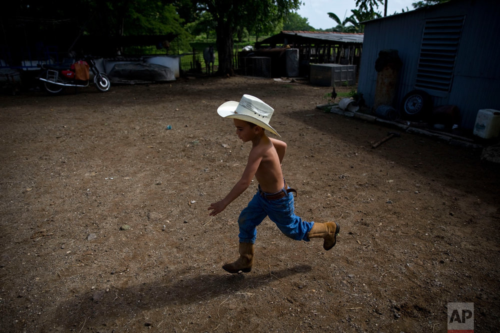 In this July 29, 2016 photo, 5-year-old cowboy David Obregon runs across his yard at his parent's farm in Sancti Spiritus, central Cuba. In the Cuban countryside, many children learn to ride a horse before they learn to ride a bicycle. Those who grow up to be the best start farm-and ranch-related studies at local universities without passing the difficult national entrance exam. (AP Photo/Ramon Espinosa)