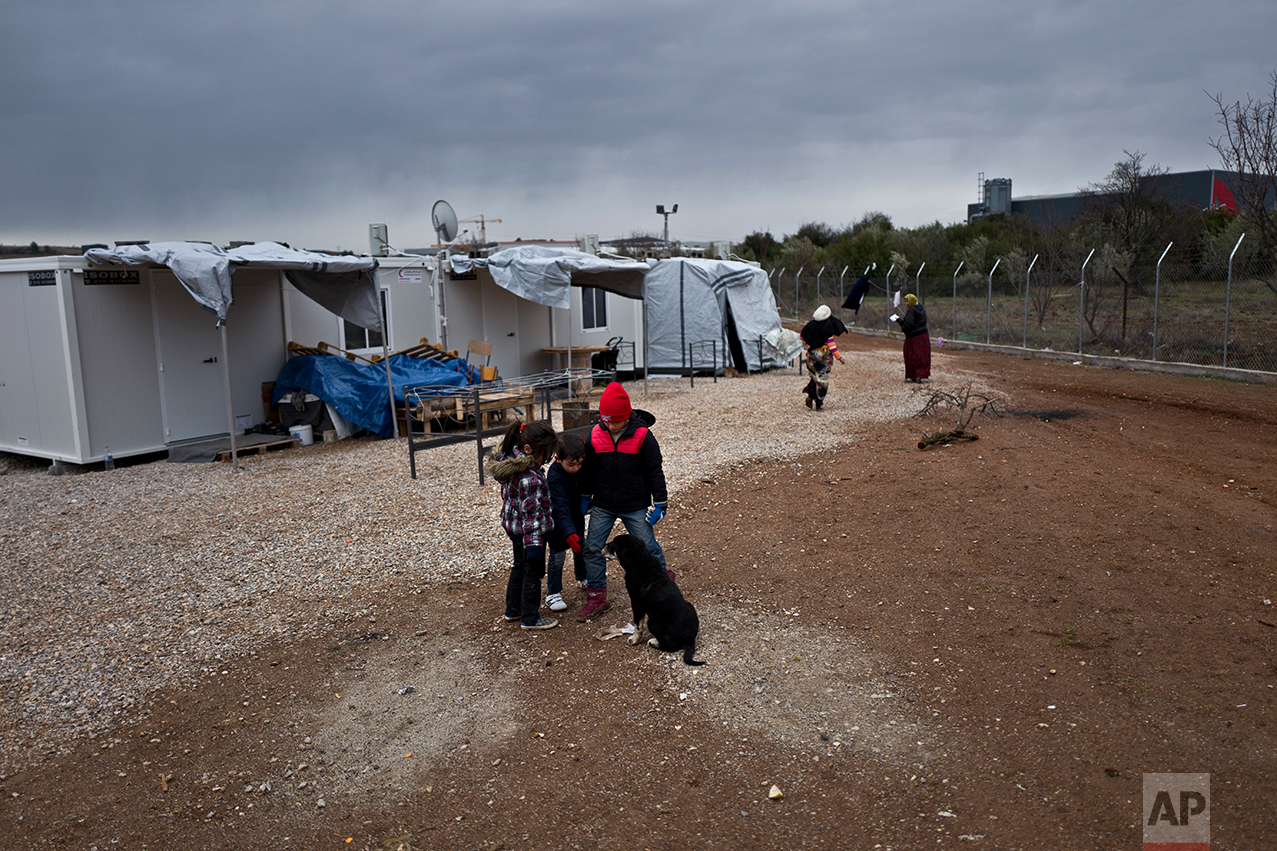 Syrian refugee children play with a puppy at the refugee camp of Ritsona about 86 kilometers (53 miles) north of Athens, Wednesday, Dec. 28, 2016. (AP Photo/Muhammed Muheisen)