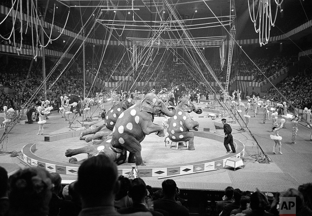 Elephants and Dancers 1961