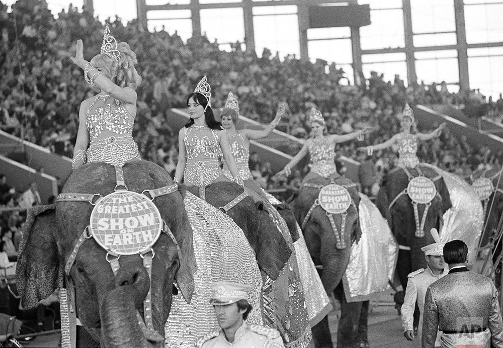 Elephants Parading 1970
