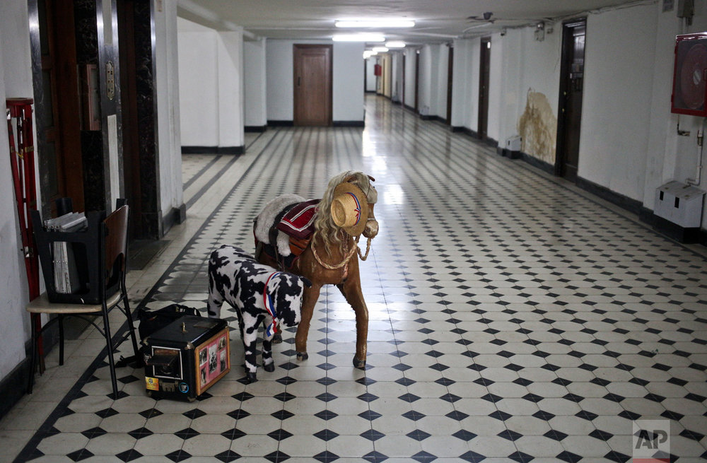 In this Aug.19 2016 photo, the wooden box camera and prop horse and cow sit next to the elevator as photographer Luis Maldonado prepares to stow away his gear after a day's work in Santiago, Chile. Maldonado believes box photography could be revived in Chile and wants to help raise awareness about the art form. (AP Photo/Esteban Felix)