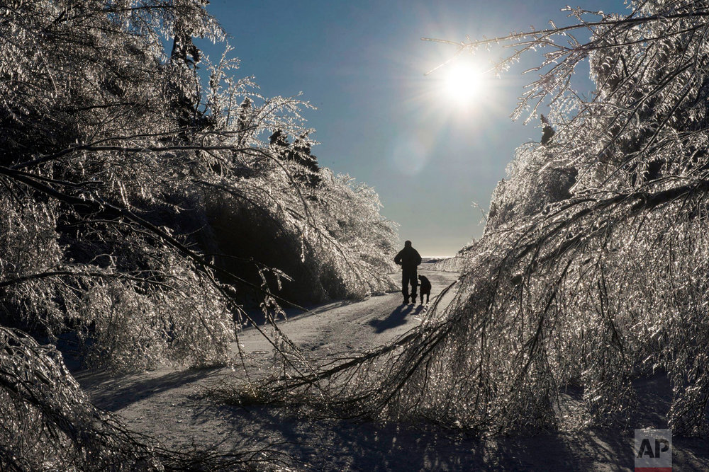 Prudent Mazerolle walks with his dog, Blackie, on the main road to his house in Pointe Sapin, New Brunswick, on Thursday, Jan. 26, 2017. More than 80,000 customers were still without power in many parts of New Brunswick early Thursday after a blustery mix of freezing rain, ice pellets and strong winds moved through the Maritimes. (Diane Doiron/The Canadian Press via AP)