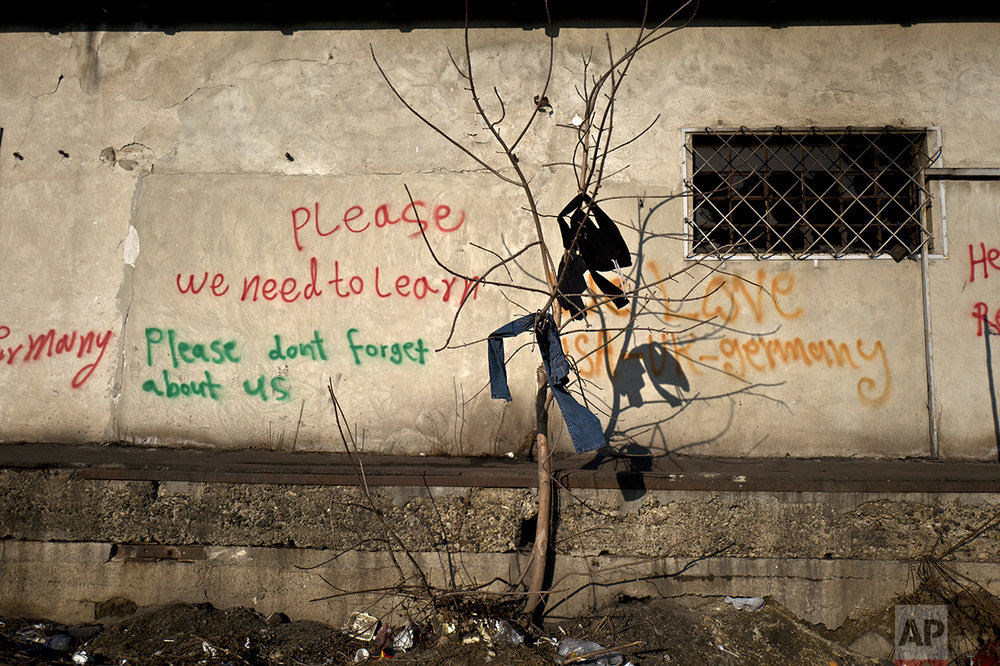 Laundry of migrants is left on a tree to dry outside an abandoned warehouse where they took refuge in Belgrade, Serbia, Tuesday, Jan. 31, 2017. (AP Photo/Muhammed Muheisen)