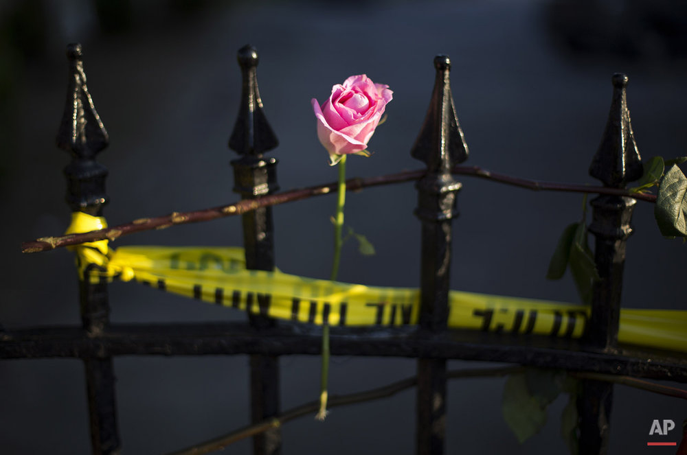 A rose is affixed to a fence along a sidewalk memorial in memory of the shooting victims in front of Emanuel AME Church Saturday, June 20, 2015, in Charleston, S.C. (AP Photo/David Goldman)