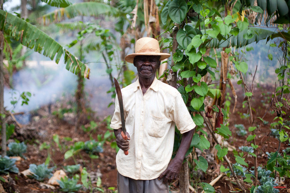 In this July 14, 2015 photo, Etoine Louisdieu, Mariette Williams' paternal uncle, poses for a portrait with his machete in his garden in Deron, a neighborhood on the outskirts of Pestel, Haiti. His garden, where he grows bananas, cabbage, yams and black beans, is located next to the home of William's birth mother. (AP Photo/Dieu Nalio Chery)