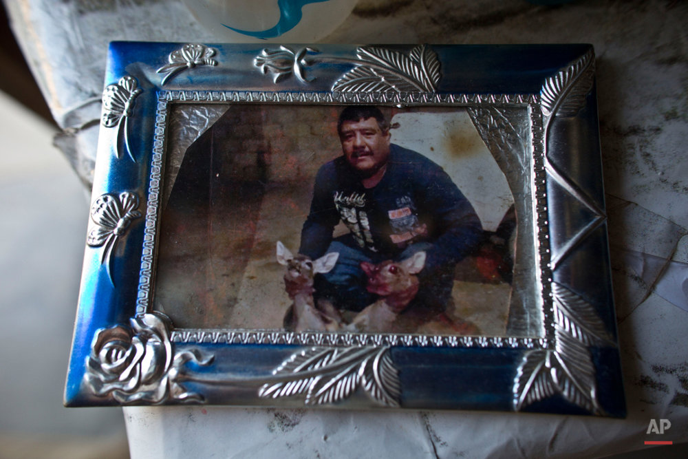 This Oct. 2, 2015 photo shows a framed snapshot of Carlos Sanchez with two deer carcasses, at the home of a relative in Teloloapan, Mexico. In the spring of 2013, four members of Sanchez's family from Guerrero stateís Tierra Caliente, a blistering region of marijuana crops and opium poppies, where drug cartels decapitate their enemies and even priests are not spared a violent death, were abducted near Iguala. (AP Photo/Dario Lopez-Mills)