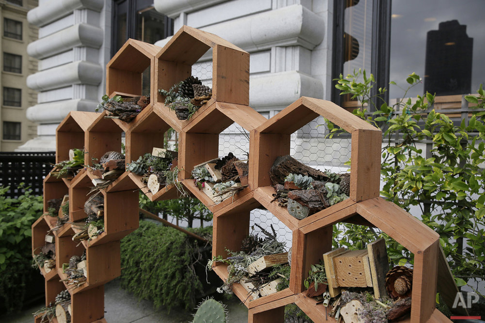 In this photo taken Wednesday, May 4, 2016, a new pollinator bee hotel stands in a garden area at the Fairmont Hotel in San Francisco. Aware of the well-publicized environmental threats to honeybees that have reduced numbers worldwide, several San Francisco hotels have built hives on their rooftops. (AP Photo/Eric Risberg)