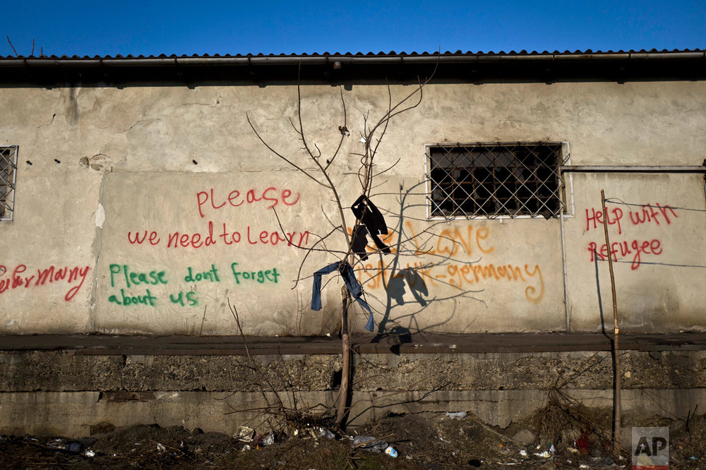 In this Tuesday, Jan. 31, 2017 photo, a pants of an unaccompanied minor is left with other laundry belonging to migrants on a tree to dry outside an abandoned warehouse where they took refuge in Belgrade, Serbia. (AP Photo/Muhammed Muheisen)