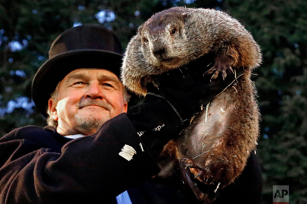 Groundhog Club handler John Griffiths holds Punxsutawney Phil, the weather prognosticating groundhog, during the 131st celebration of Groundhog Day on Gobbler's Knob in Punxsutawney, Pa. Thursday, Feb. 2, 2017. Phil's handlers said that the groundhog has forecast six more weeks of winter weather. (AP Photo/Gene J. Puskar)
