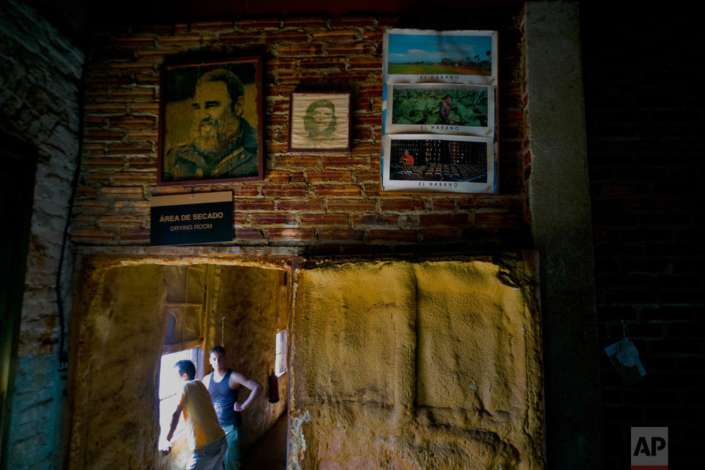 "In this Feb. 28, 2017 photo, images of the late leader Fidel Castro, revolutionary hero Ernesto ""Che"" Guevara, and tobacco farm scenes, decorate a wall inside a state-run ""drying room"" where tobacco curers take a work break in San Luis, Cuba's western province Pinar del Rio, Cuba. The drying sheds are full of tobacco leaves, waiting for the moment when they are transformed into hard currency for the country, a welcome development for Cuba's ailing economy. (AP Photo/Ramon Espinosa)"
