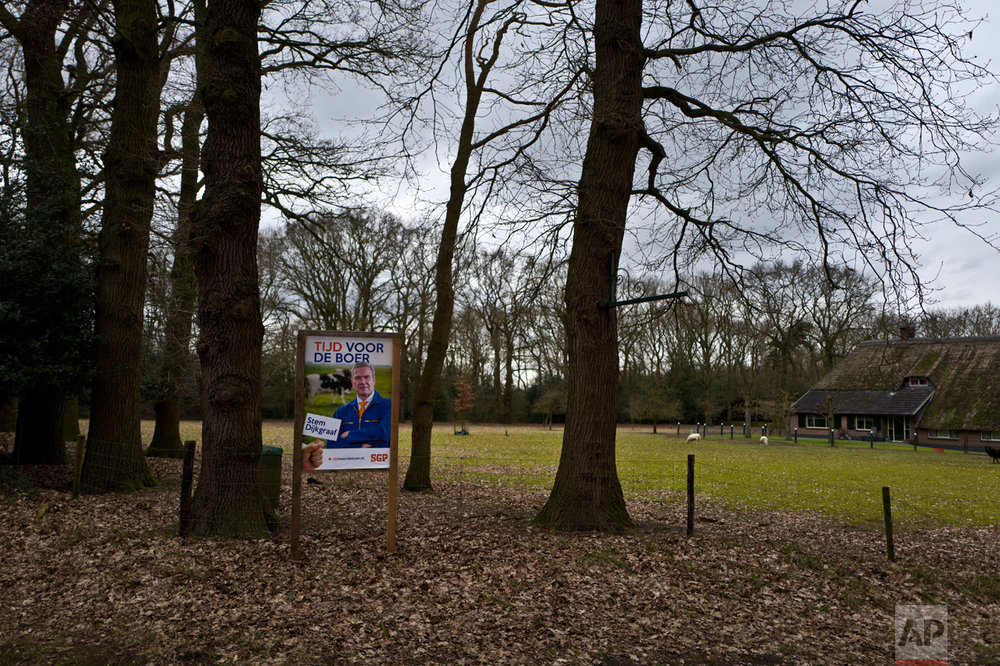 "In this Saturday, March 4, 2017 photo, an election banner supporting the Reformed Political Party, SGP, and reads ""It is the time for the farmers, vote for Dijkgraaf"", is displayed by the entrance of a campsite that used to be farm in Ermelo, Netherlands. March 15 marks the general election in the Netherlands. (AP Photo/Muhammed Muheisen)"