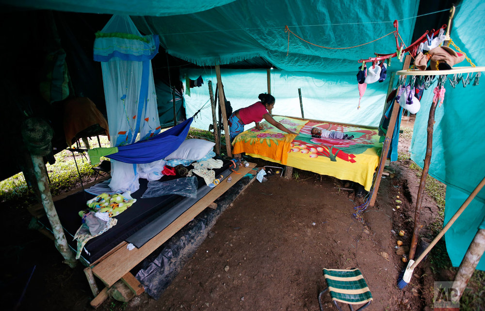 In this Tuesday, Feb. 28, 2017 photo, FARC rebel Deisy Garcia makes her bed where her 3-month-old son Junior Alexis rests inside their tent at a rebel camp in a demobilization zone in La Carmelita, in Colombia's southwestern Putumayo state. The FARC kept strict control over its fighters' reproductive rights and female guerrillas who became pregnant were forced to leave newborns with relatives or abort. But after the FARC and government reached an agreement to end the armed conflict, those rules loosened, resulting in a baby boom. (AP Photo/Fernando Vergara)