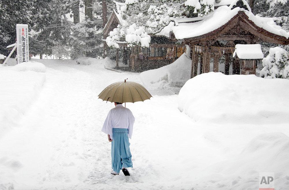 A man walks near Yahiko Shrine during snowstorm at Yahiko Mura City, Japan on Wednesday, Feb 8, in Japan, 2012.   (AP Photo/Nick Ut)