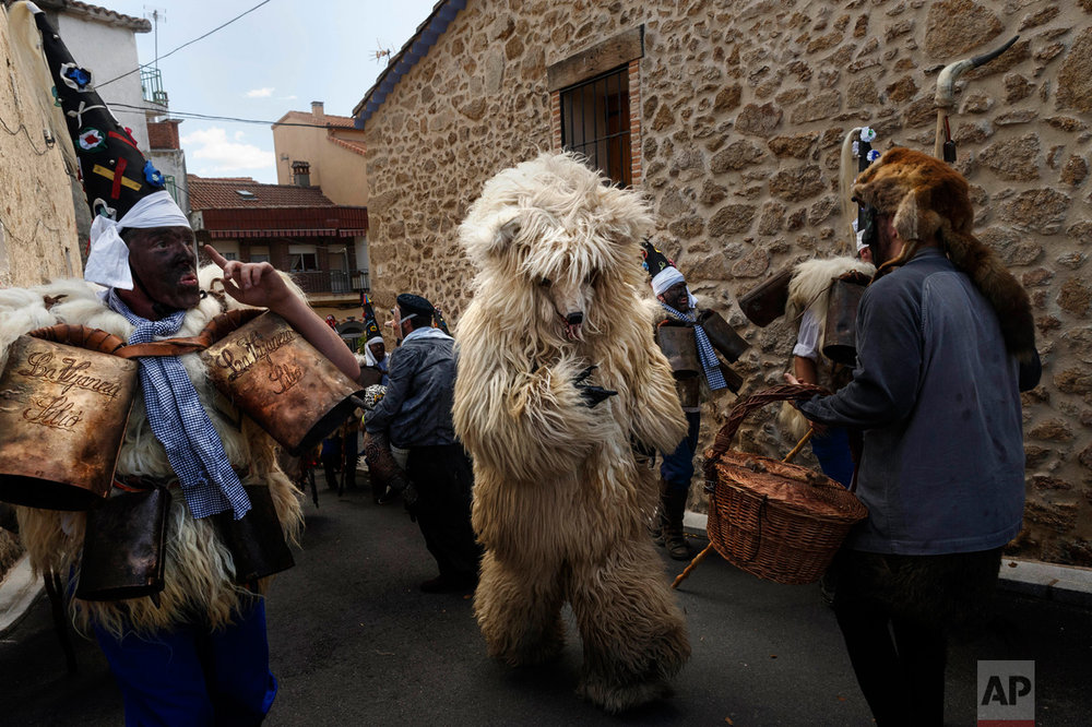 In this April 1, 2017 picture, a man representing a wild bear runs through 'Zarramacos' ringing their cowbells in representation of the traditional carnival of La Vijanera de Silio during a gathering of different villages' carnival masks and characters, in Casavieja, Spain, Monday, April 3, 2017. These festivals, held across central and northwestern Spain, most often coincide with festivities celebrating the advent of spring, mixing Carnival and bizarre pagan-like rituals with mock battles between good and evil. (AP Photo/Daniel Ochoa de Olza)
