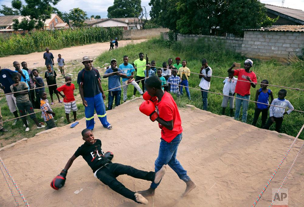 In this Saturday, Feb. 12, 2017 photo, a young boy is knocked out during a boxing match in Chitungwiza, Zimbabwe. (AP Photo/Tsvangirayi Mukwazhi)