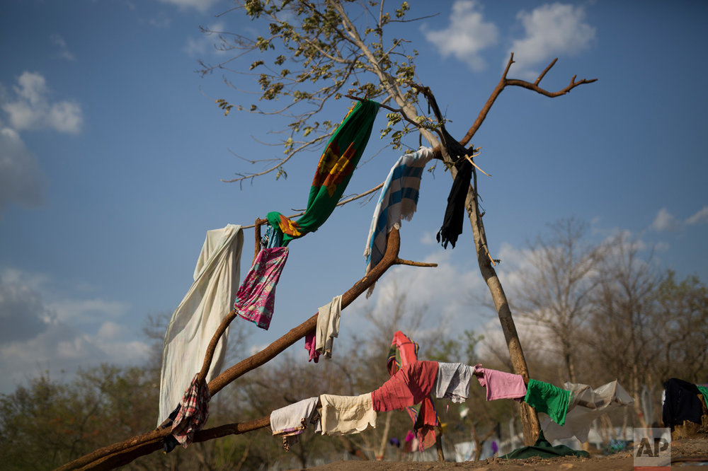 In this Saturday, April 1, 2017 photo, laundry dries on a tree in the new Imvepi refugee settlement in northern Uganda. Imvepi is growing at a rate of over 2,000 refugees each day. (AP Photo/Jerome Delay)