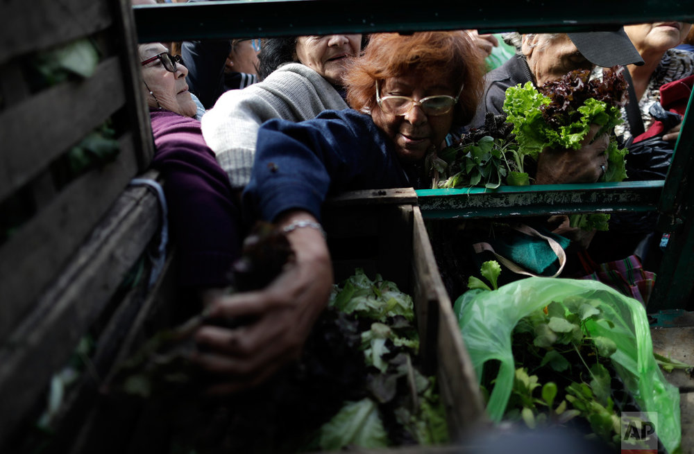 People grab free lettuce at the Plaza de Mayo in Buenos Aires, Argentina, Monday, April 24, 2017. Farmers gave away fruits and vegetables as a form of protest, demanding land rights and rural development. (AP Photo/Natacha Pisarenko)