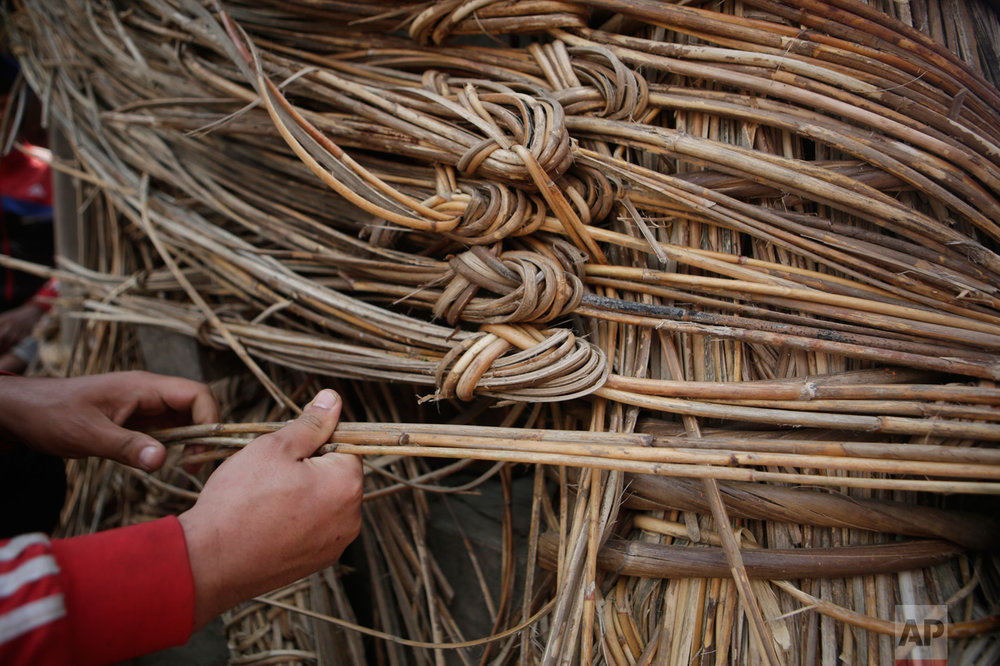 In this April 18, 2017, photo, a member of Yanwal community use cane strips in the construction of the Rato Machindranath Chariot in Lalitpur, Nepal. The wooden chariot is built to appease the gods in hopes of being blessed with a good rainfall followed by a bountiful harvest. The chariot built every year is 15-meters (48-foot) tall and based on a chassis that is only wide as a small truck. The Yanwals have the task of tying the tower of logs together with truck-loads of cane. (AP Photo/Niranjan Shrestha)
