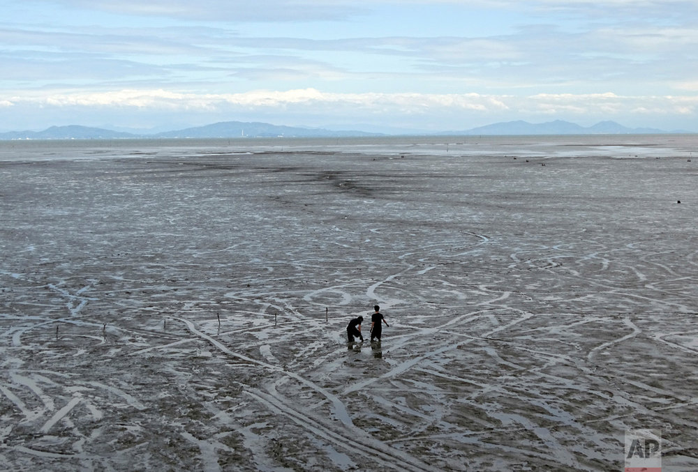 Visitors play in the tidal mudflats of Tideland on the Ariake sea in Kashima, Saga Prefecture, southwestern Japan Friday, May 5, 2017. (AP Photo/Eugene Hoshiko)