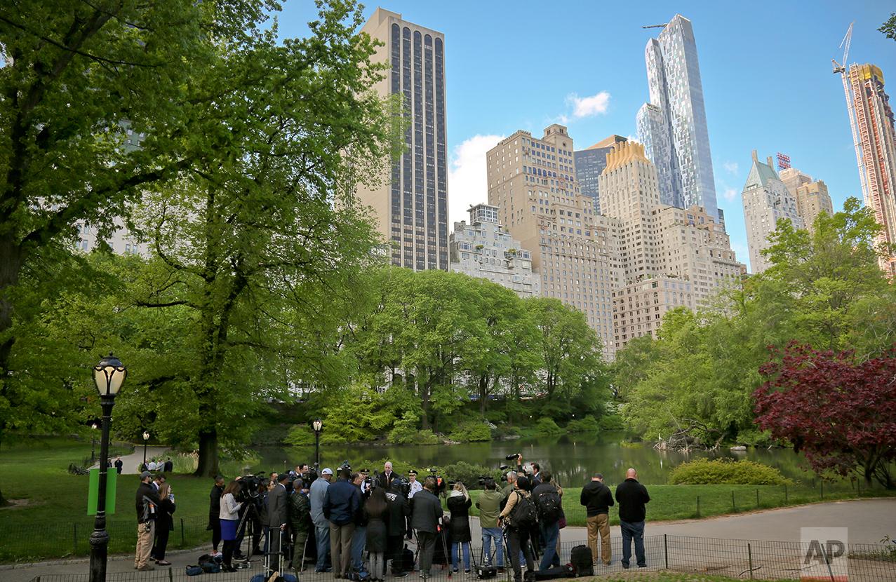 Central Park Bodies