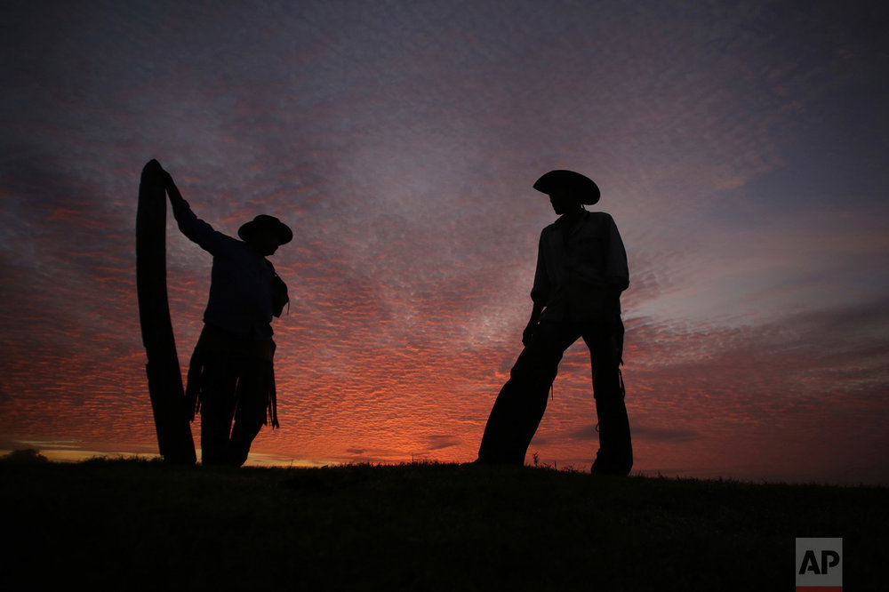 "In this May 18, 2017 photo, Joao Aquino Pereira, right, talks with fellow cowboy Rene Almeida at dawn in Corumba, Pantanal wetlands, Mato Grosso do Sul state, Brazil. On his feet hours before sunrise, 66-year-old Pereira readies the horses and wakes up the herd of oxen for a new day in the three-week pilgrimage in search of grass. ""Today's going to be one of those days,"" says the old cowboy, forecasting the weather by looking up at the red skies. ""It seems like it'll be a hot one and we still need to prepare the cattle to go across the river."" (AP Photo/Eraldo Peres)"