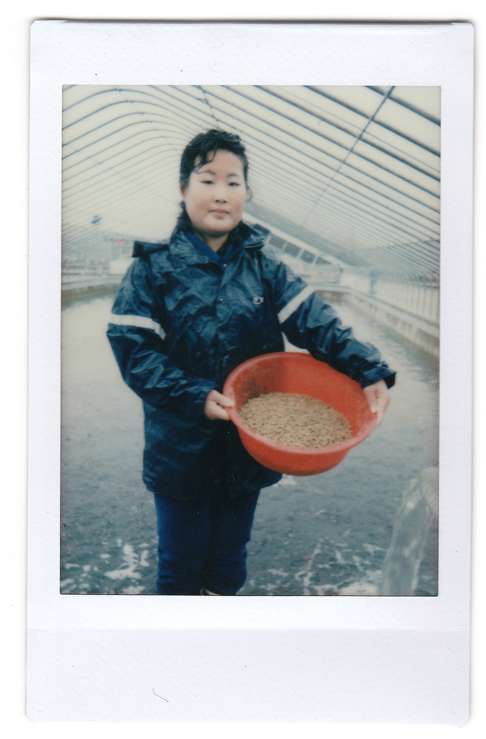 "In this April 17, 2017, photo made with an instant camera, Kim Jin Ok, 25, poses for a portrait as she feeds catfish at the Pyongyang Catfish Farm, in Pyongyang, North Korea. When asked what's important to them, North Koreans might talk about working hard, or doing well at sports, or having a big family, but leader Kim Jong Un is never far from the conversation. Her motto: ""Working hard at my job pleases our leader Kim Jong Un."" (AP Photo/Wong Maye-E)"