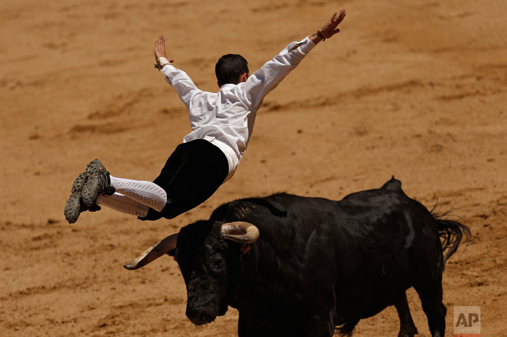 A recortador jumps over a bull during a recortadores festival at Las Ventas bullring in Madrid, Sunday, June 11, 2017. Recortadores is a performance consisting of acrobatically leaping over a bull, and those who get closer to the bull and show less fear are the winners. (AP Photo/Francisco Seco)