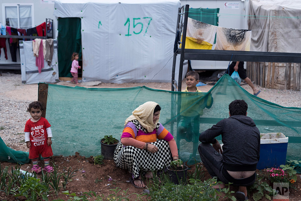 In this May 26, 2017 photo, a Syrian family tend their garden at the refugee camp of Ritsona about 86 kilometers (53 miles) north of Athens. (AP Photo/Petros Giannakouris)