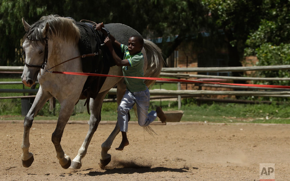 In this Saturday, March 11, 2017 photo, 11-year-old boy Lesekgo Mngadi jumps on to a horse during the equestrian vaulting practice at the Soweto Equestrian Centre in Johannesburg, South Africa. (AP Photo/Themba Hadebe)