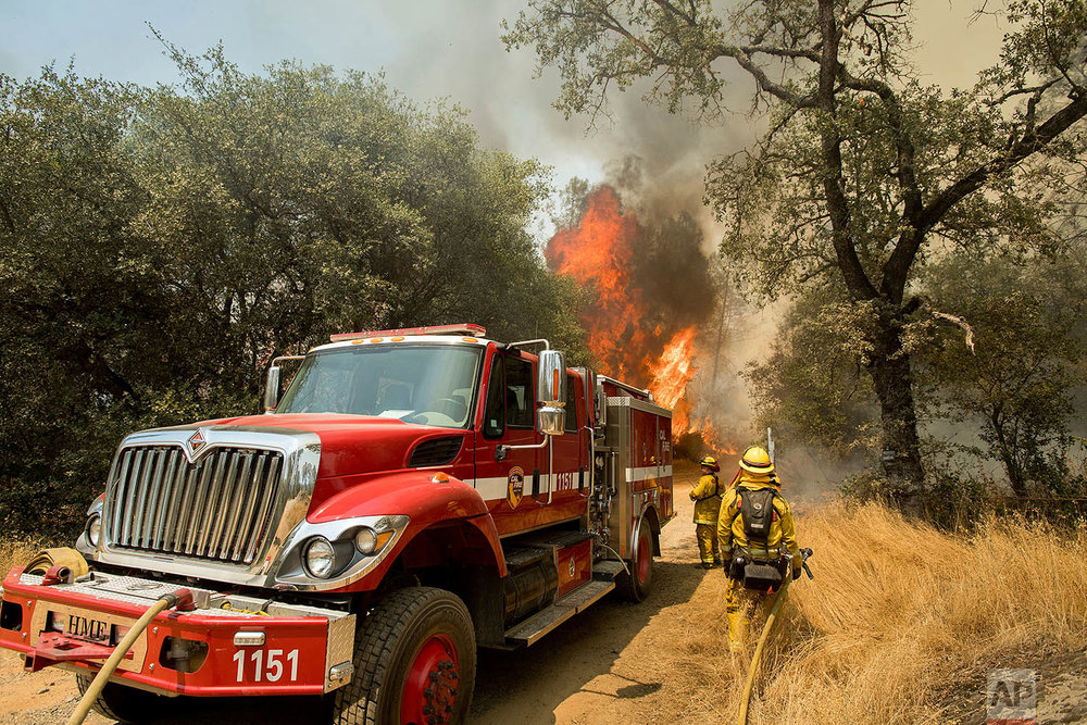 Firefighters battle a wildfire near Oroville, Calif., on Saturday, July 8, 2017. The California Department of Forestry and Fire Protection reported that several residents and one firefighter suffered minor injuries. Residents were ordered to evacuate from several roads in the rural area as flames climbed tall trees. (AP Photo/Noah Berger)