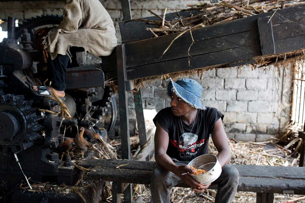 In this June 16, 2017 photo, Ronalson Chery, 26, eats rice and beans he brought from home as he takes a lunch break from moving sugar cane to the machine that extracts the juice at the Ti Jean distillery, which produces clairin, a sugar-based alcoholic drink, in Leogane, Haiti. The juice is the raw material of both clairin and the type of rum associated with the French Caribbean. Most rum produced elsewhere is made from molasses. (AP Photo/Dieu Nalio Chery)