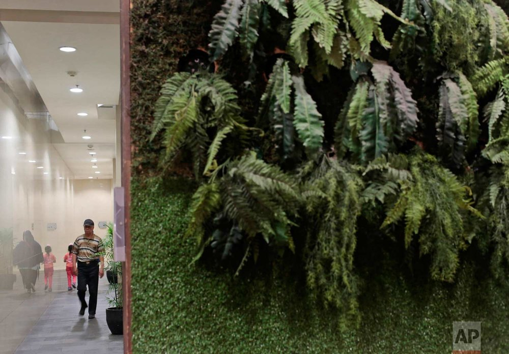 In this Saturday, Nov. 12, 2016 photo, a man walks past a wall decorated with artificial plants at a shopping mall in Jakarta, Indonesia. The metropolitan's gleaming air conditioned malls have a particular fondness for fake trees and forests, creating an irony as the country is known for cutting down its precious tropical forests at a record rate. (AP Photo/Dita Alangkara)