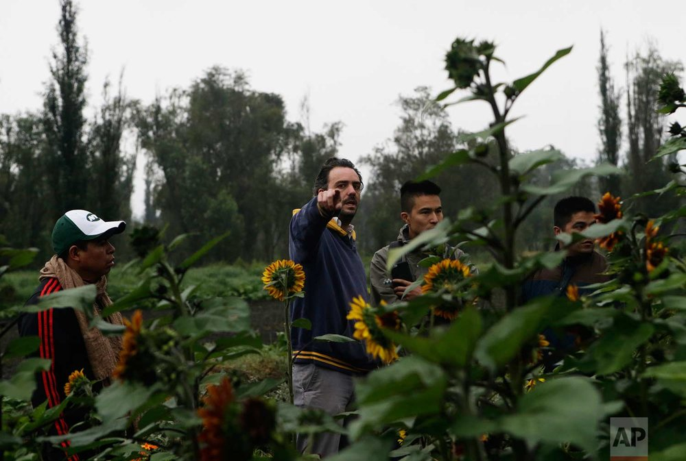 "In this July 13, 2017 photo, farmer Lucio Usobiaga, founding partner of Yolcan, points to a vegetable field as he talk to chefs and restaurant employees on a floating farm known as a ""chinampa"" in Xochimilco, Mexico City. (AP Photo/Marco Ugarte)"